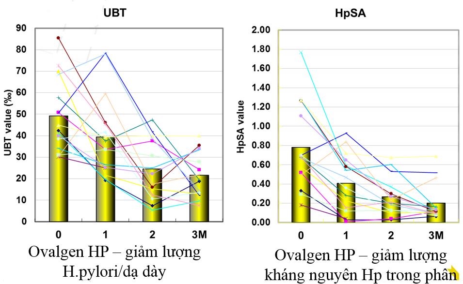 Đánh giá hiệu quả của bổ sung kháng thể OvalgenHP trên đối tượng người bệnh dạ dày nhiễm Hp