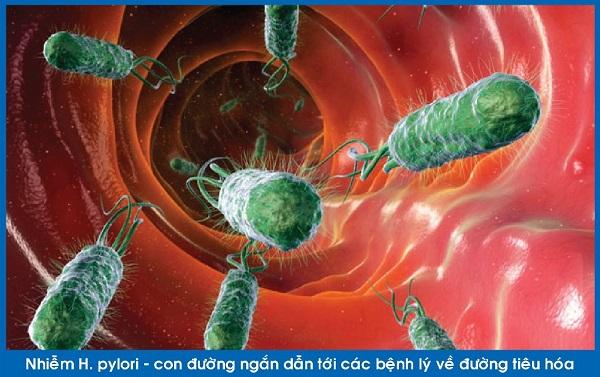 Các yếu tố gây bệnh của vi khuẩn Hp 1