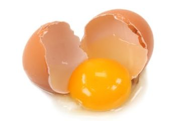 Dùng kháng thể từ lòng đỏ trứng gà để hỗ trợ chữa Viêm loét dạ dày tá tràng