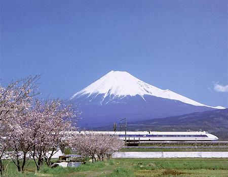 Đột phá của Nhật Bản trong kiểm soát nhiễm khuẩn Hp dạ dày 1