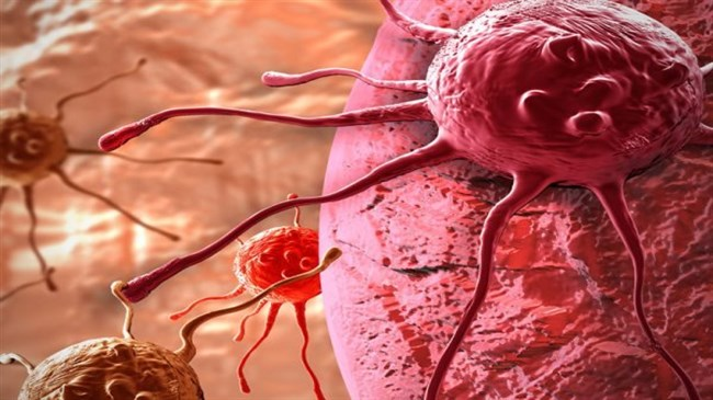 Phát hiện mối quan hệ nhân quả của nhiễm khuẩn Hp và Ung thư dạ dày 2