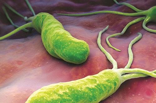 Tác hại của vi khuẩn HP cho dạ dày như thế nào? 1
