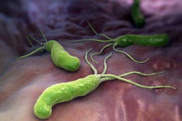 Những bệnh có thể gặp khi nhiễm vi khuẩn HP