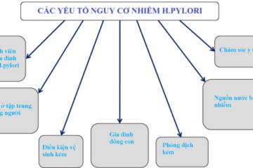 Các yếu tố nguy cơ nhiễm vi khuẩn Hp