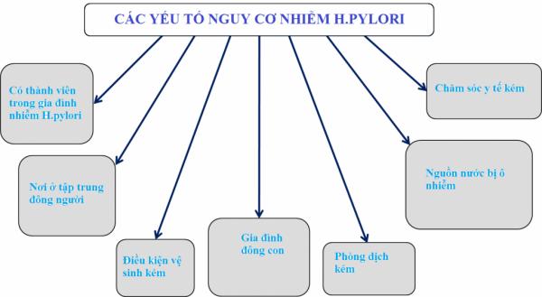 Các yếu tố nguy cơ nhiễm vi khuẩn Hp 1