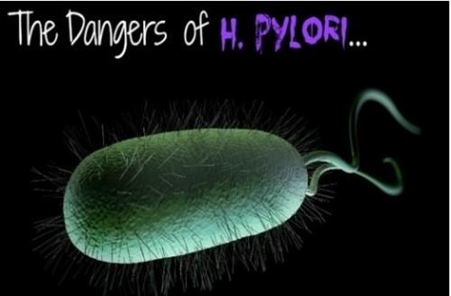 Sự thật ít biết về loại vi khuẩn Hp gây Ung thư dạ dày 1