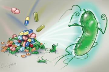 Chuyên gia cảnh báo nguy cơ vi khuẩn Hp kháng thuốc và  các giải pháp mới