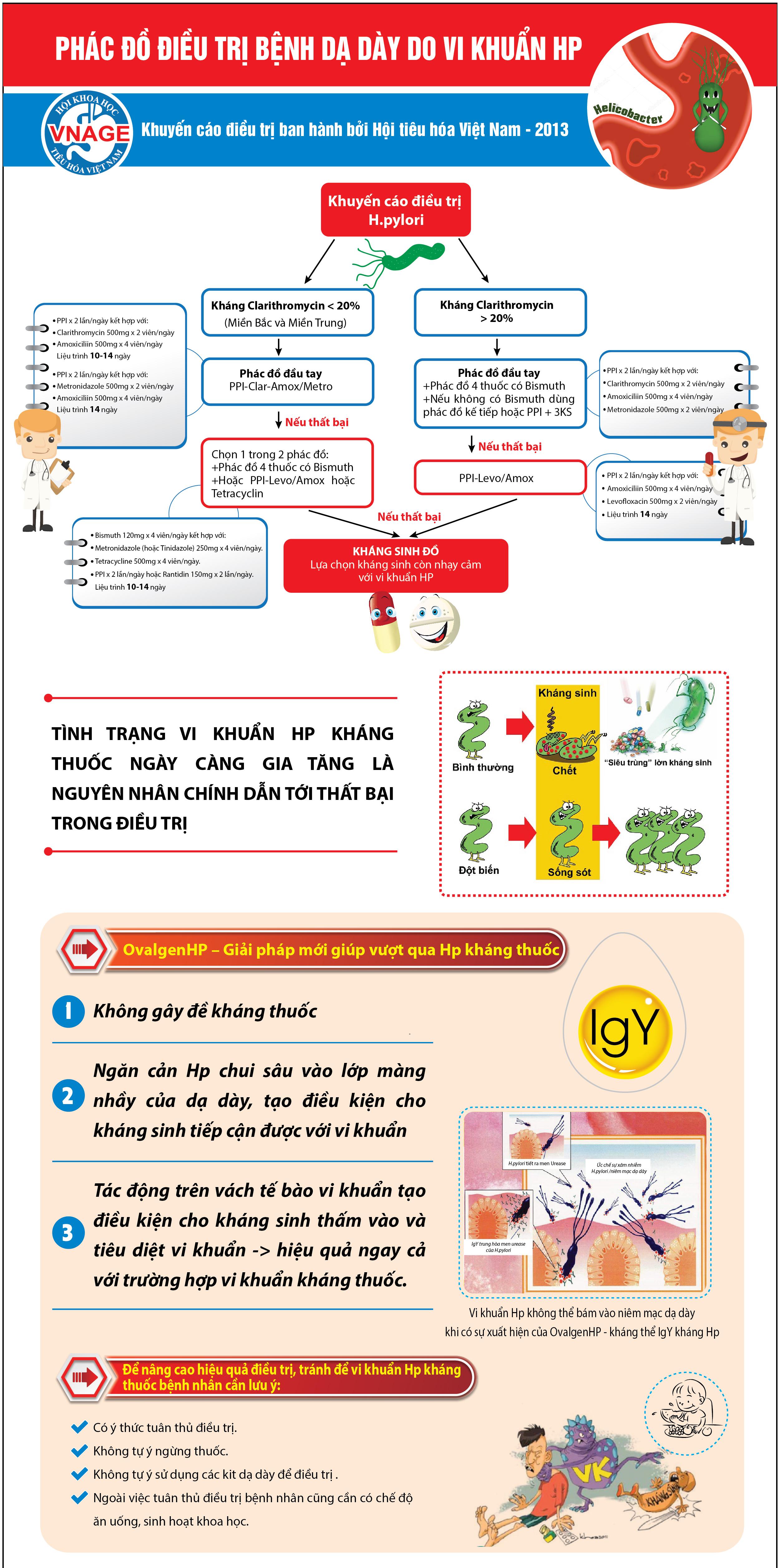 Infographic - Phác đồ điều trị bệnh dạ dày do vi khuẩn Hp 1