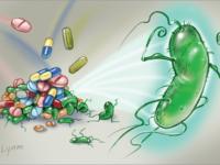 Tình trạng lây nhiễm, tái nhiễm Hp ở trẻ em – CT sức khỏe cho mọi nhà ngày 28-3-2017