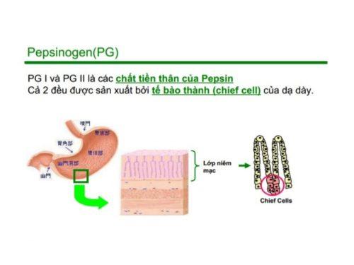 xet-nghiem-pepsinogen