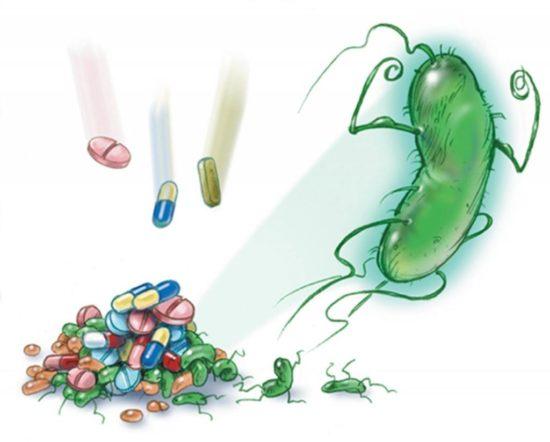 Phác đồ điều trị bệnh viêm loét dạ dày do nhiễm khuẩn HP ở trẻ em 1